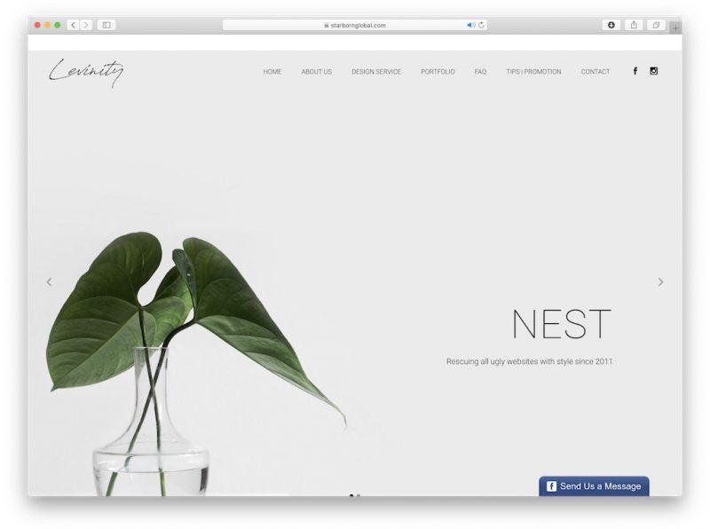 NEST Web design Malaysia