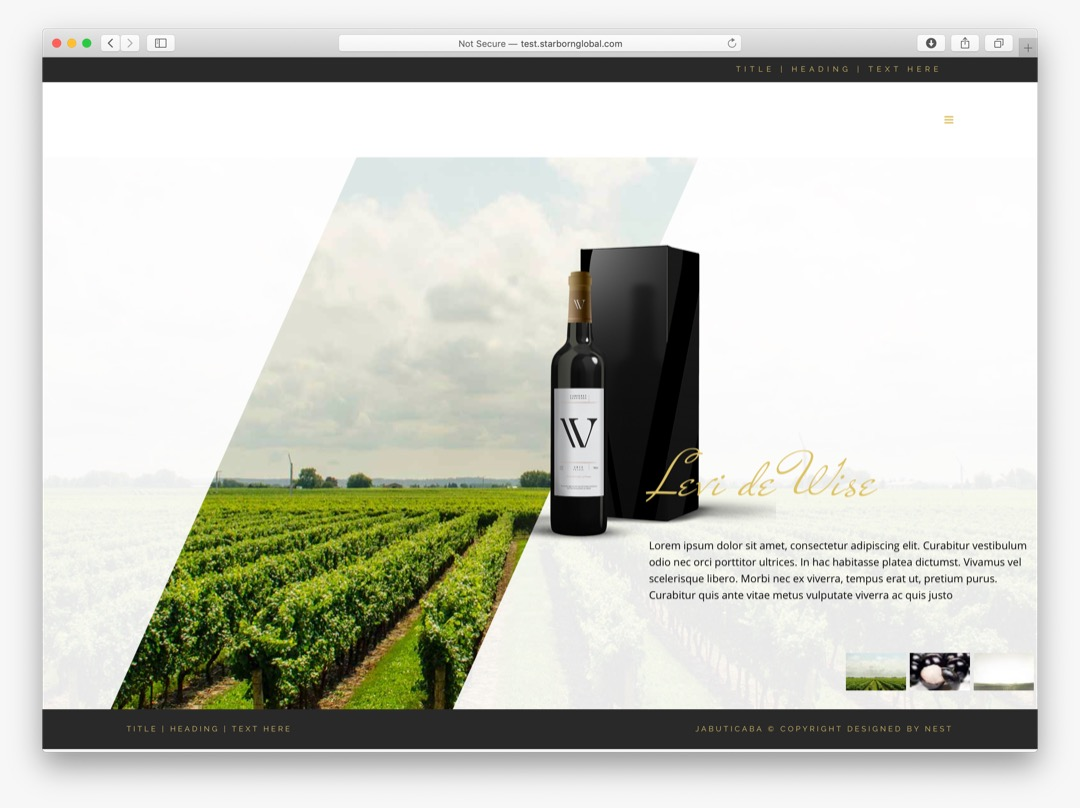 jacabutica web design