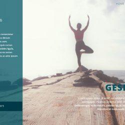 gesher wellness