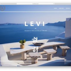 levi thum website, web designer in Kuala Lumpur Malaysia