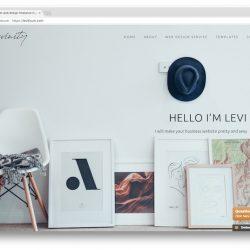 Levi thum web designer in Malaysia
