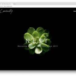 nest web design singapore