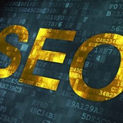 learn seo fast tutorial beginners step by step
